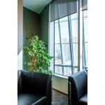 Elmas & Yeşiloğlu Astoria Ofis Fotoğraf Çekimi
